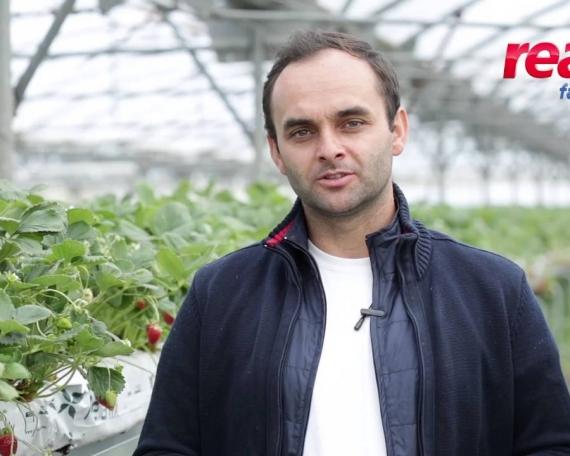 REAL Hypermarket – Producatori Locali